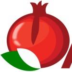 logotipo de ASCENSORES DE GRANA SL.